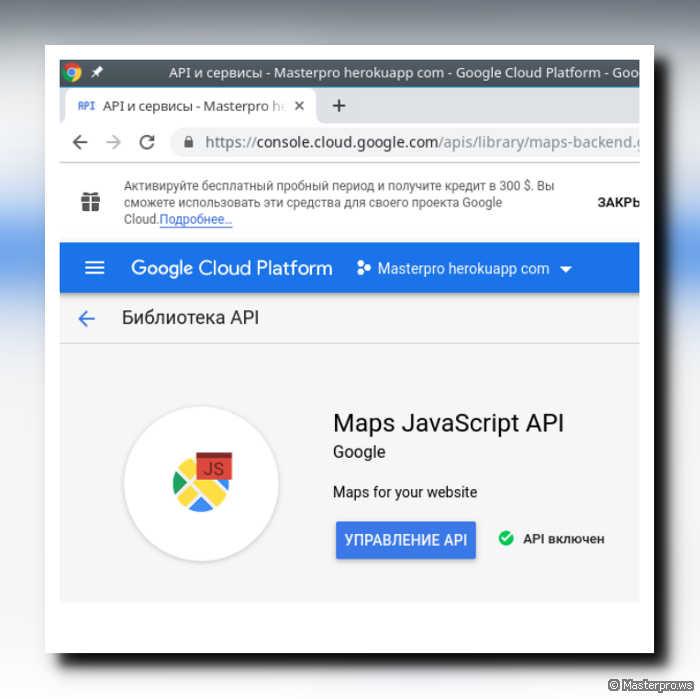 Maps JavaScript API Google
