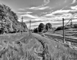 Веб-аналитика on Rails